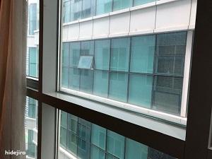窓からの様子